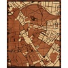 "16""x20"" Woodcut Map of Cambridge"