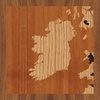 "8""x8"" Woodcut Map of County Roscommon"
