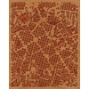 "16""x20"" Woodcut Map of Belo Horizonte"