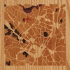 "8""x8"" Woodcut Map of Albany"