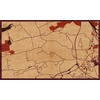 "30""x18"" Woodcut Map of Schenectady"