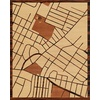"16""x20"" Woodcut Map of Schenectady"