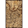 "18""x30"" Woodcut Map of Grenoble"