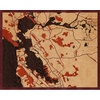 "20""x16"" Woodcut Map of Castro Valley"