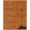 "16""x20"" Woodcut Map of Mount Airy"