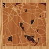 "8""x8"" Woodcut Map of Holmdel"