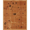 "16""x20"" Woodcut Map of Fresno"